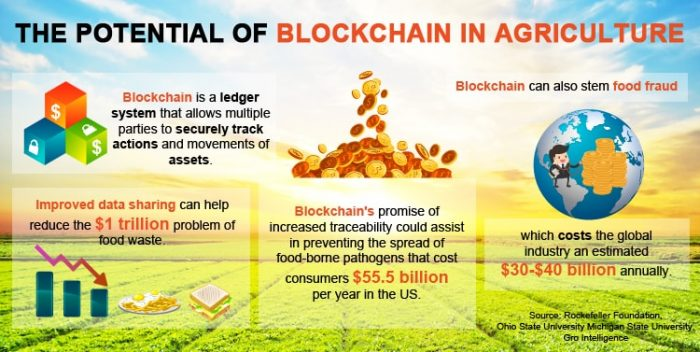 blockchain in agriculture