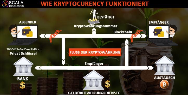 Kryptowährungen - Zukunft oder Modeerscheinung